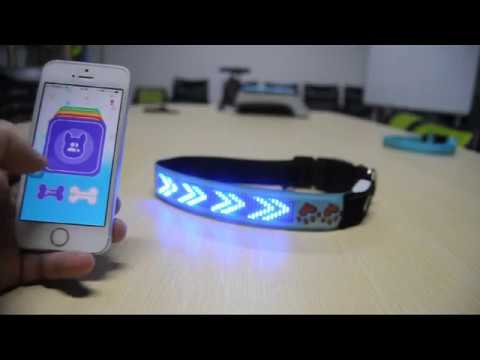 AIDI PET-App Control LED Text Dog Collar