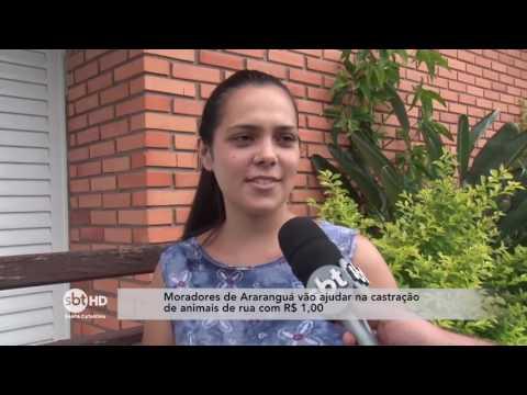 Moradores de Araranguá vão ajudar na castração de animais de rua com R$ 1,00