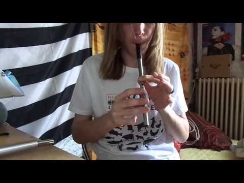 Fainne Geal an Lae - Irish trad (Air) on tin whistle Tony Dixon trad D