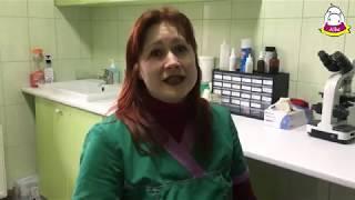 Боярка АЛЬБА ЗООВЕТЦЕНТР albazoo.com.ua 097-800-77-44 ветеринар