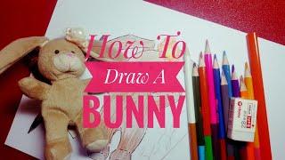 How To Draw A Bunny - Stuffed Animal Drawing screenshot 2