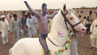 New Kabaddi Match 2016 | All Pakistan open kabaddi match