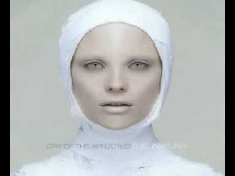 08. Cry Of The Afflicted - Heed The Sound.avi