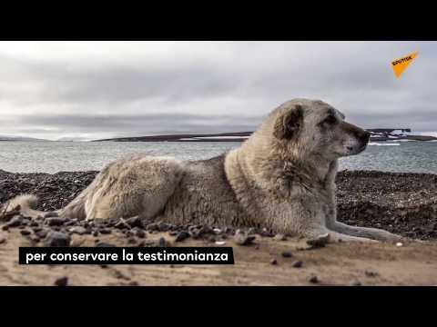 SPUTNIKPEDIA - La Terra Di Francesco Giuseppe