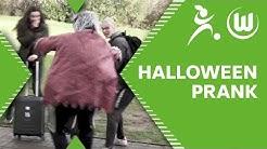 Fieser Halloween-Streich: Kulle prankt die Wölfinnen