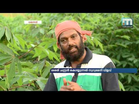 Director Sarat Chandran Harvest Fruitful Results