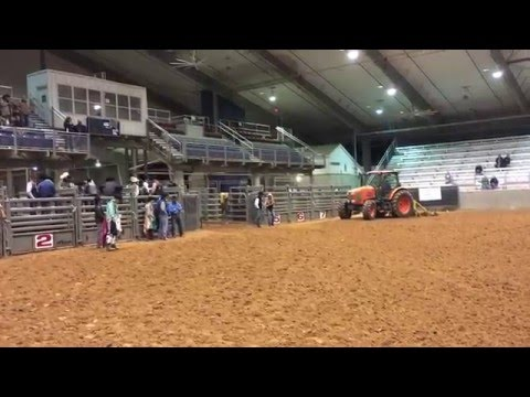 2016 Texas A Amp M College Rodeo Mckenna Brown Short Go