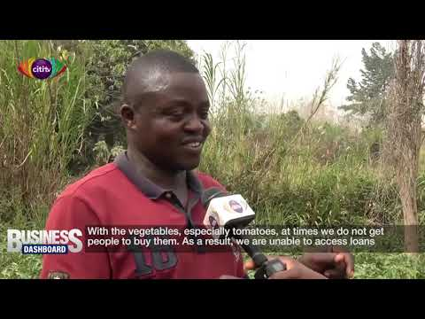 Vegetable farmers worried over adulterated agro-chemicals   Business Dashboard