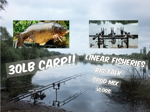 Carp Fishing- Oxford Linear Vlogs- Oxlease & Hardwick And Smiths- Carp Fishing- Sam And Ben Fishing