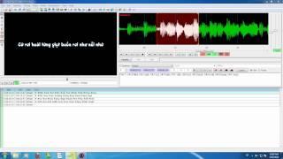 Hướng dẫn chỉnh thời gian phù hợp với Audio khi Time Line (Sub) bị lệch