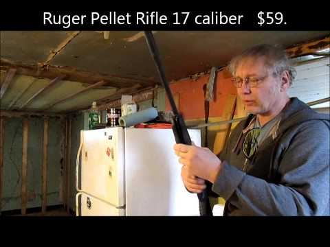 .22 Caliber $30 Pellet Rifle Review
