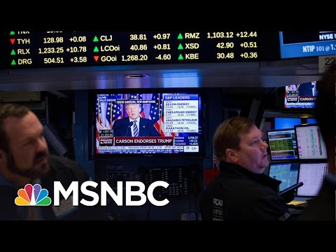 Stock Market Rallies Following Donald Trump Being Elected President | MSNBC