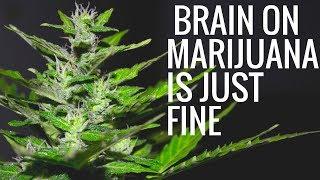 Brain on Marijuana is Just Fine