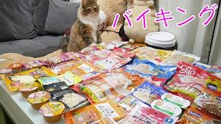 チャンネル登録・高評価・Twitterフォロー是非お願いします! 便利な猫...