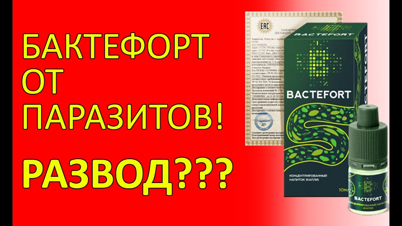 Bactefort купить в Украине - YouTube