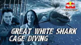 Red Bull Challenge Ep. 02 featuring Anya Geraldine & Baim Wong: Great White Shark Cage Diving!