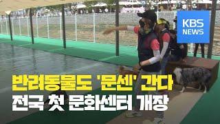 경북 의성에 전국 첫 반려동물 문화센터 개장 / KBS…