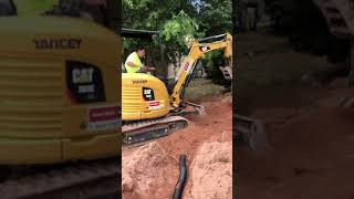 Covering up drainage pipe No job is too tough for Duff Tuff