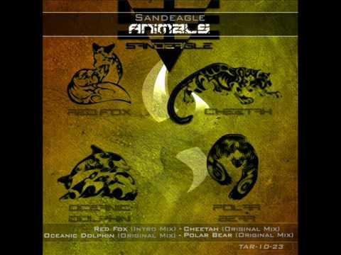 Sandeagle - Cheetah (Original Mix)