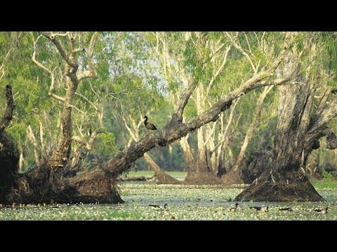 Tour Australia: Kakadu National Park