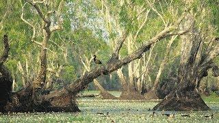 Tour Australia: Kakadu National Park