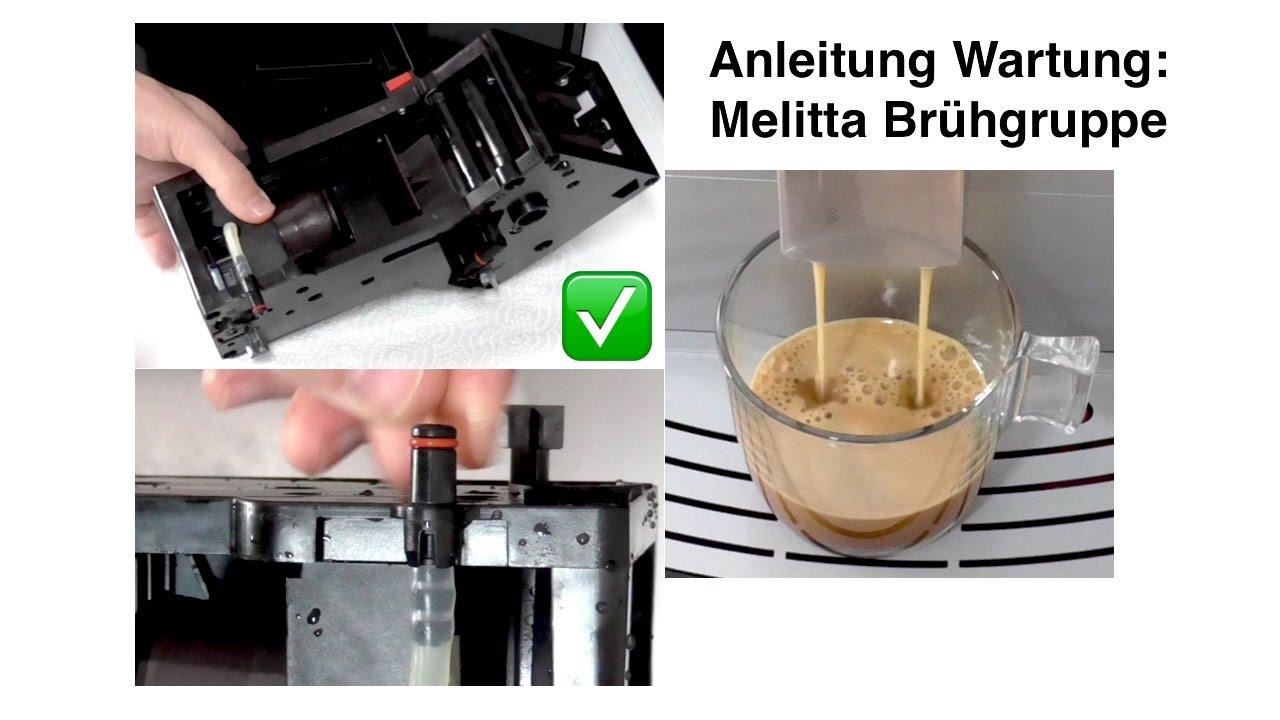 Anleitung Melitta Caffeo Bruhgruppe Reinigung Dichtung Wechseln Einfetten Wartung Diy Youtube