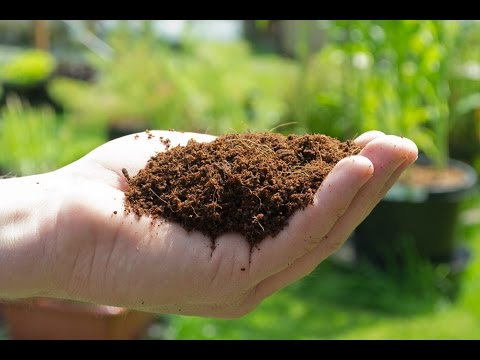 Growex - Coco Coir Substrate - Hydroponics Organic & Soil Gardening - Canna Nutrients Coco.