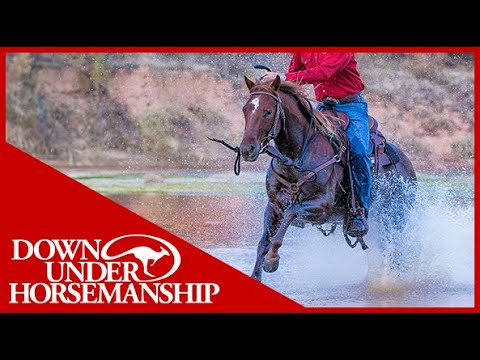 Clinton Anderson: Teach Your Horse to Cross Water - Downunder Horsemanship