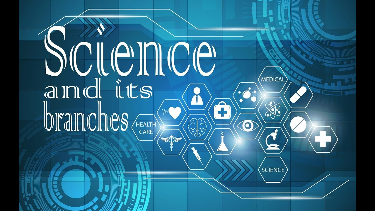 science branches definition main its