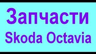 видео Запчасти Шкода Октавия