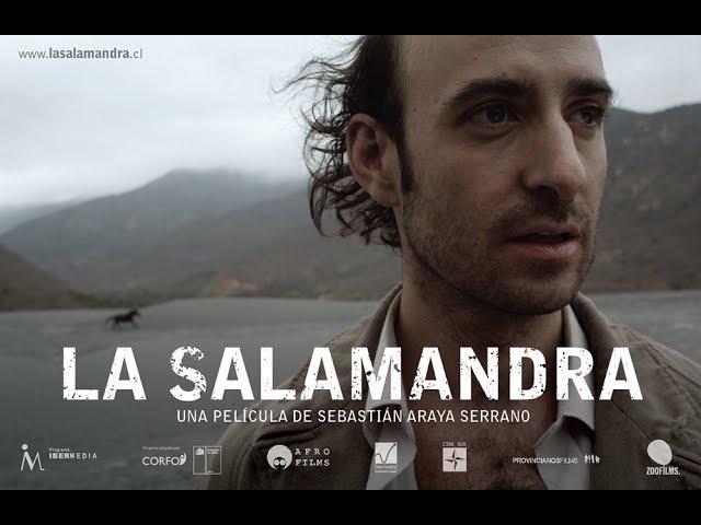 Estreno Nacional (Chile-Ecuador) LA SALAMANDRA