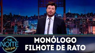 Monólogo: Filhote de rato | The Noite (16/11/18)