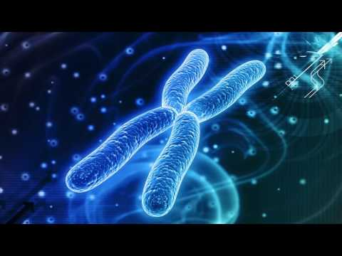 Facts of Biotechnology & Its Scope 2017
