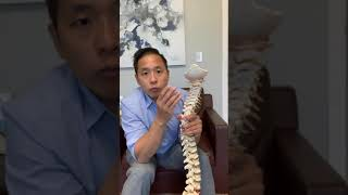Why You Have Neck Pain - Dr. Kevin Nguyen (Chiropractor)