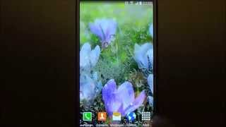 Spring landscapes live wallpaper for Android phones and tablets screenshot 3