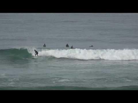 Surfing Del Mar
