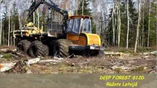 Deep forest 612D .wmv