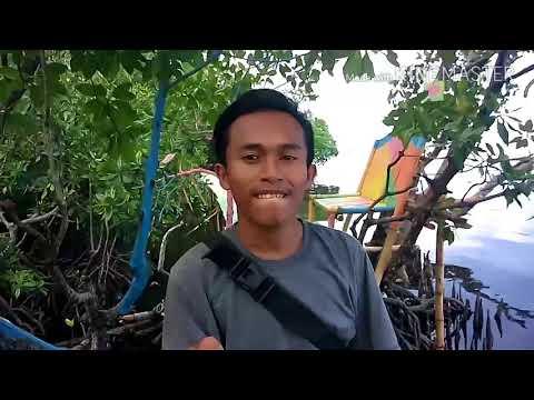 mangrove-#vlog-pantai-timur-palu-sulawesi-tengah