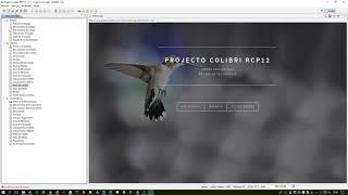 Projecto Colibri RCP 12 - Abertura de Séries Facturação