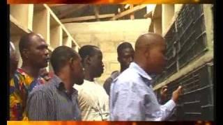 Cane rat farming in Nigeria