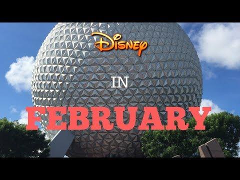 Visiting Disney World In February