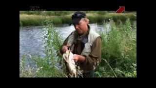 Уроки рыбной ловли. 3 выпуск. Щука на искусственную приманку