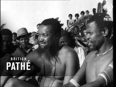 Download Zulu Wedding (1941)