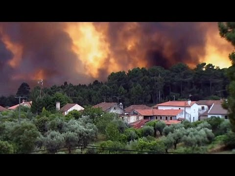 Dozens killed trying to escape raging forest fire in Portugal