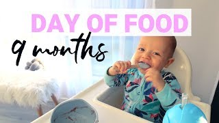 Gambar cover WHAT MY 9 MONTH OLD EATS IN A DAY {Krissy Ropiha}