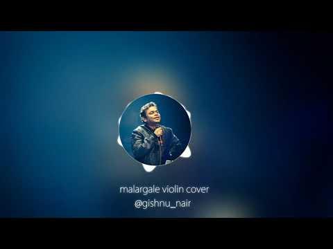 Malargale violin cover