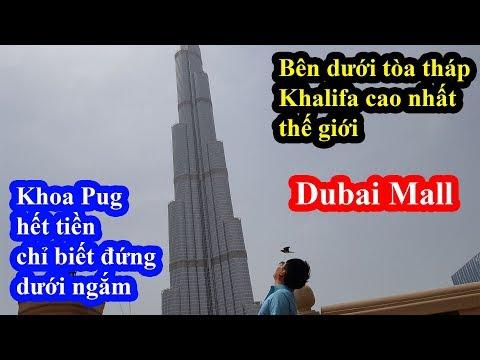 Khoa Pug vào Dubai Mall lớn nhất thế giới thì hết tiền đành ngắm tháp Khalifa từ xa trong ngậm ngùi