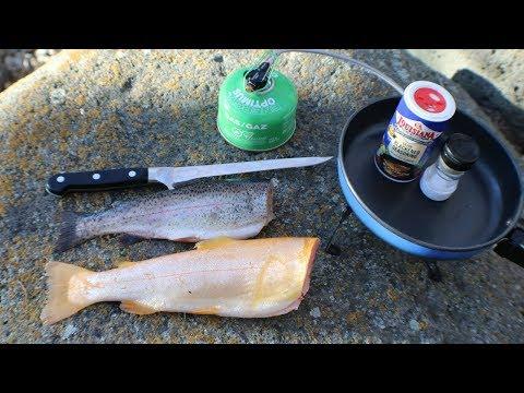 Golden Trout vs. Rainbow Trout Catch n' Cook Taste Test!