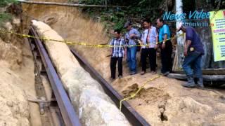 Video VIDEO Inilah Fosil Batang Pohon Ulin Sepanjang 28 Meter download MP3, 3GP, MP4, WEBM, AVI, FLV Juni 2018