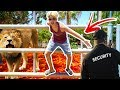 FLOOR IS LAVA CHALLENGE AT ZOO! (KICKED OUT)